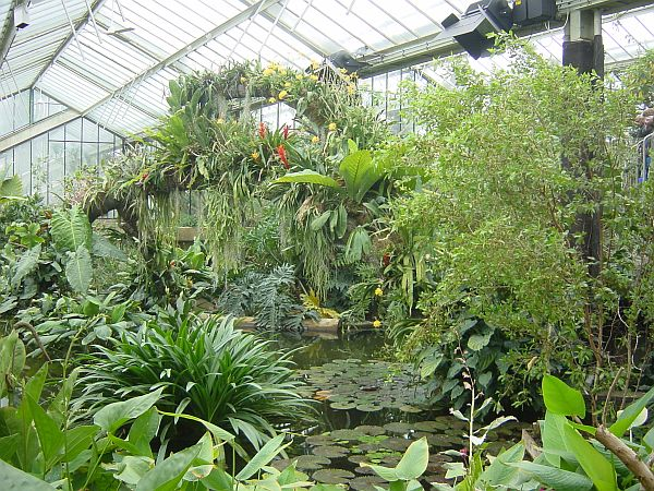Photo - Princess of Wales conservatory