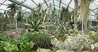 Princess of Wales conservatory - Kew Garden