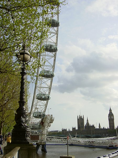 Photo - London Eye et le Parlement