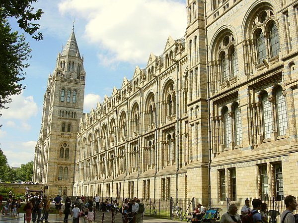 Photo - Natural History Museum