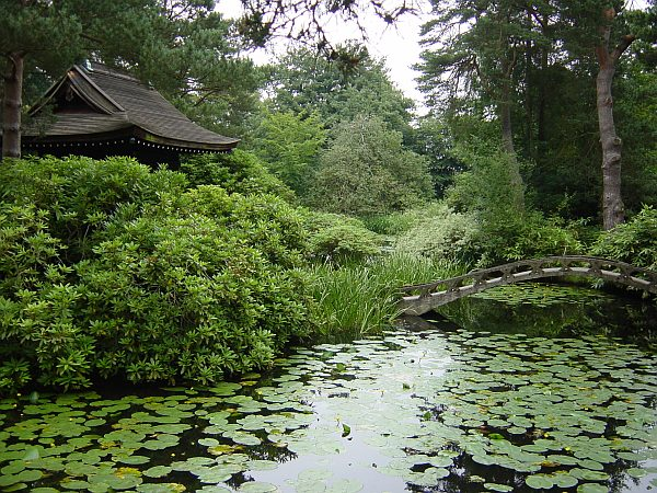 Photo - TattonPark - Japanese Garden