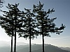 The 4 pine trees - Alishan - Sunrise