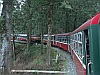 The train in Alishan Forest - Alishan - Sunrise