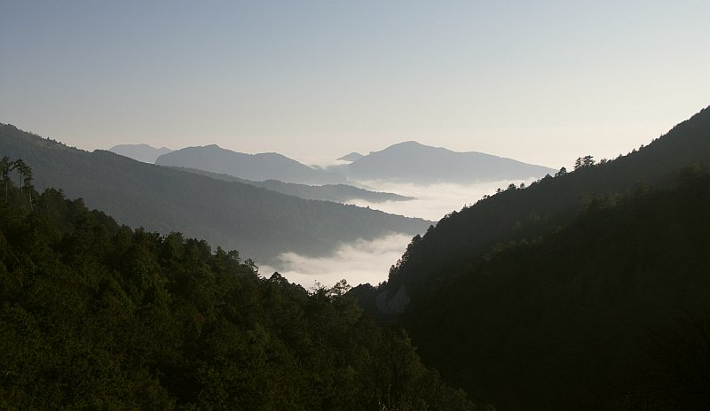 Photo - Alishan - Sea of clouds in the valley